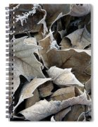 Maple Salad Spiral Notebook