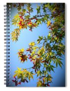 Maple Seeds In September Spiral Notebook