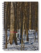 Maple Sirup Hdr No1 Spiral Notebook