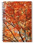 Maple Tree Foliage Spiral Notebook