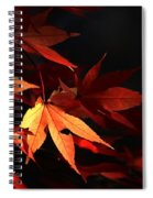 Maple Tree Leaves I Spiral Notebook