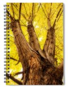 Maple Tree Portrait 2 Spiral Notebook