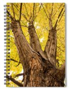 Maple Tree Portrait Spiral Notebook