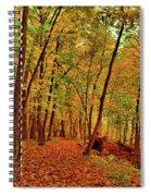Maple Woods Trail 2 Spiral Notebook