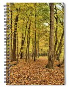 Maple Woods Trail Spiral Notebook