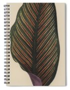 Maranta Regalis Spiral Notebook