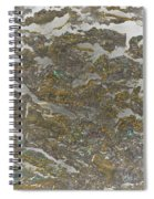 Marble Bark Colored Abstract Spiral Notebook