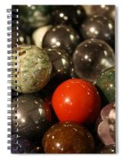 Marbles Spiral Notebook