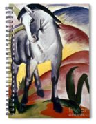 Marc: Grey Horse, 1911 Spiral Notebook