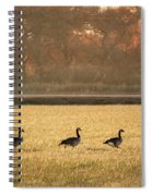 March Of The Geese Spiral Notebook