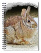 March Rabbit With Vignette Spiral Notebook