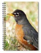 March Robin Spiral Notebook