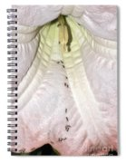Marching Ants Spiral Notebook