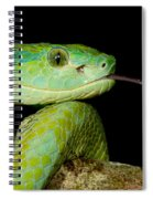 Marchs Palm Pitviper Spiral Notebook