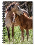 Mare And Colt Spiral Notebook