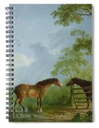 Mare And Stallion In A Landscape Spiral Notebook