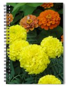 Marigold And Zinnias Spiral Notebook