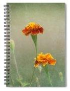 Marigold Fancy Spiral Notebook