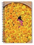Marigold Offering Spiral Notebook