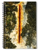 Marine Obsession Spiral Notebook