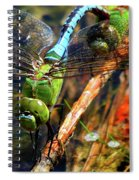 Married With Children Dragonflies Mating Spiral Notebook