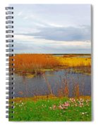 Marsh Spring Spiral Notebook