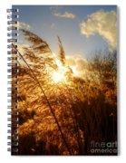 Marsh Sunset Spiral Notebook