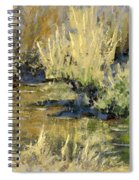 Marsh Twilight Spiral Notebook