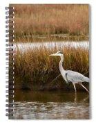 Marsh Wader Spiral Notebook