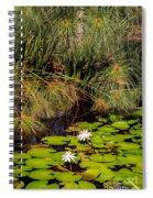 Marsh Waterlilies  Spiral Notebook