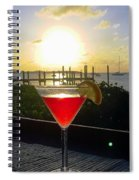 Martini At Sunset II Spiral Notebook
