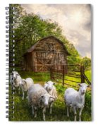 Mary Had A Little Lamb Spiral Notebook