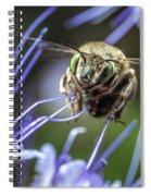 The Pilot  Spiral Notebook