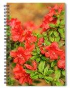 Masses Of Azaleas Spiral Notebook