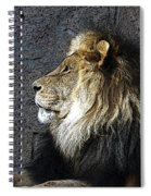 Master Spiral Notebook