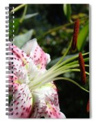 Master Gardeners Art Floral Pink Lily Flower Baslee Troutman Spiral Notebook