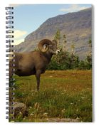 Master Of His Domain Spiral Notebook