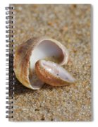 Matched Set Spiral Notebook