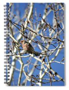 Mate In Waiting Spiral Notebook