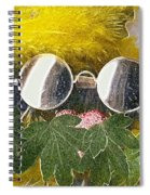 Materials And Eyeglasses Spiral Notebook