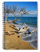 Maui Beach Dirftwood Fine Art Photography Print Spiral Notebook