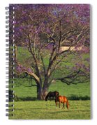 Maui, Upcountry Spiral Notebook