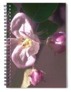 Mauve Blossom Spiral Notebook