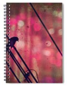 May 14 2010 Spiral Notebook