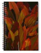 May Festival Spiral Notebook