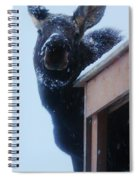 May I Come In Spiral Notebook