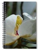 May Magnolia 2 Spiral Notebook