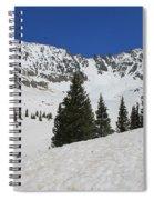 Mayflower Gulch Winter Spiral Notebook