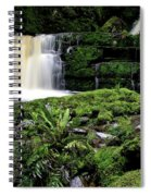 Mclean Falls In Southland New Zealand Spiral Notebook