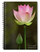 Pink Lotus And A Bud Spiral Notebook